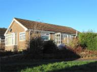 Detached Bungalow to rent in Mallard Road, Scotton...