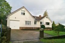 4 bed Detached home in Okehampton