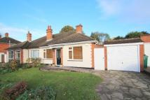 3 bed Bungalow to rent in Springfield Gardens...