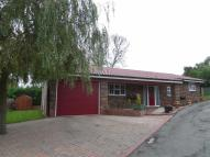 Detached Bungalow for sale in Cherry Tree Rise...
