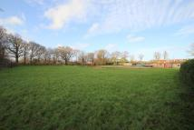 Detached house for sale in Dorking Lane, Smarden...