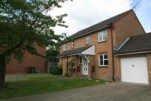 3 bed semi detached house to rent in Turner Avenue, Cranbrook...