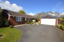 Detached Bungalow for sale in Lance Close, Burbage...