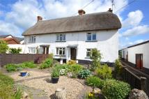 3 bed semi detached house for sale in Laburnum Cottages...