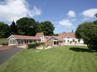 Detached property in Toadpit Lane, West Hill...