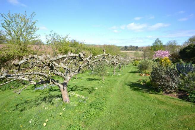 Garden & Orchard
