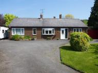 Detached Bungalow in Caefelyn, Presteigne...