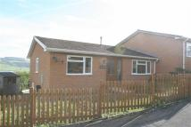 3 bed Semi-Detached Bungalow in Rockes Meadow, Knighton...
