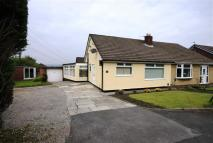 2 bed Semi-Detached Bungalow in South Drive, Harwood...