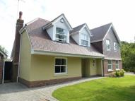 4 bed new house in Poplar Road, Wittersham
