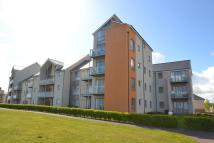 2 bed Apartment to rent in Kittiwake Drive...