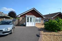 Detached Bungalow for sale in Brampton Court...
