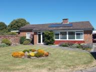 Bungalow to rent in Milford On Sea