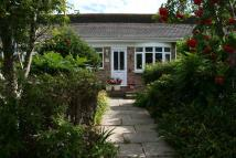 Bungalow to rent in 99 The Meadway...
