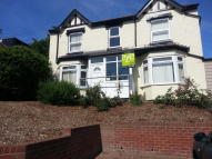 1 bed Studio flat in Elmstead Road, Colchester