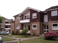 1 bedroom Ground Flat to rent in Cedar Court, Epping, CM16