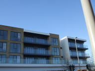 JUBILEE AVENUE new Apartment to rent