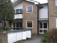 1 bedroom Ground Flat to rent in Cedar Court, Epping...