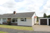 2 bed Semi-Detached Bungalow to rent in Clinton Road, Lymington...