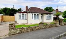 BALFOUR CRESCENT Bungalow to rent
