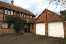 property to rent in Grenfell Road, Maidenhead, Berkshire, SL6