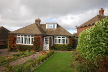 2 bed Detached Bungalow in Heathfield, East Sussex