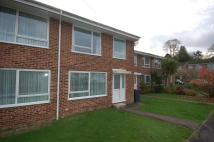 Uckfield semi detached property to rent