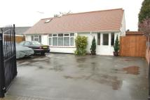 Detached Bungalow in Hollyfast Road, Coundon...
