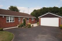 Detached Bungalow to rent in Lance Close...
