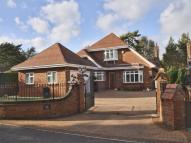 Detached property for sale in Ashley Heath, Ringwood...