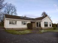 4 bed Detached Bungalow to rent in DRUM Crook Of Devon, KY13