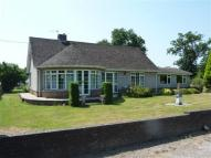3 bedroom Detached Bungalow to rent in Tanglewood...