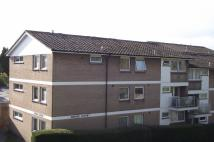 2 bed Flat to rent in Dorchester
