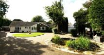 Detached Bungalow for sale in Brown Heath Rd...