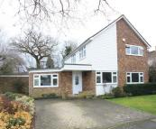 4 bedroom property to rent in NELSON GARDENS GUILDFORD...