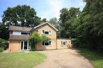 4 bed house to rent in BIRCH CLOSE, SEND, SURREY