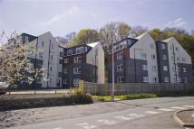 3 bed Apartment in Wilderhaugh, Galashiels