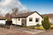 2 bed Bungalow in Maukeshill Court...