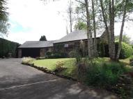4 bedroom Bungalow in Shotley Bridge