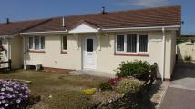 3 bedroom Detached Bungalow to rent in Daisymount Drive...