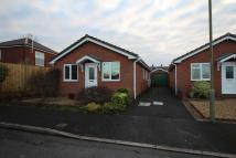 Detached Bungalow to rent in Stanham Close, Ellesmere...