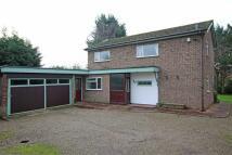Bryn Estyn Road Detached house for sale