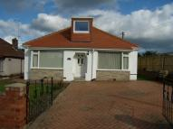 Dolydd Lane Bungalow to rent