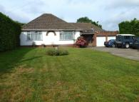 3 bed Detached Bungalow in BOOKHAM - LOVELY...