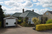 2 bed Detached Bungalow for sale in The Inch...