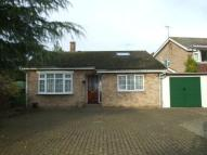 Bungalow to rent in Church Street, Clifton...