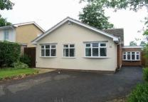 4 bedroom Detached Bungalow to rent in Dippons Mill Close...