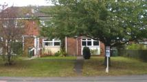 Ground Flat to rent in Duck Lane, Codsall...