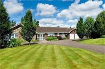 Detached Bungalow in Vercourt, Little Aston...