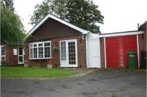 2 bed Detached Bungalow to rent in Holly Grove, Bradmore...
